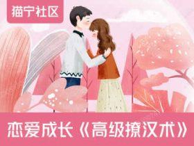 恋爱成长《高级撩汉术》音频课程